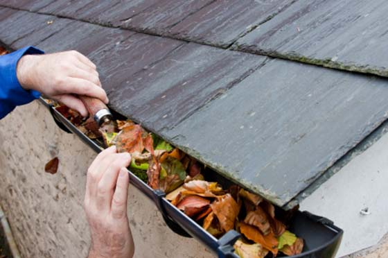 how to clean leaves from your gutter